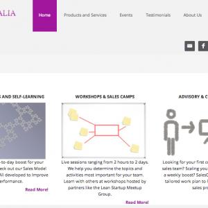 http://www.salesqualia.com/