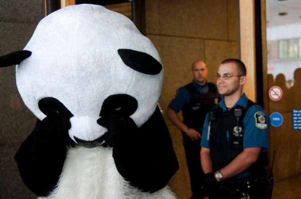 The Panda is sad