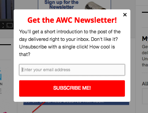 My Newsletter Popup