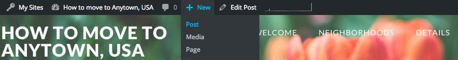 The WordPress Admin Bar