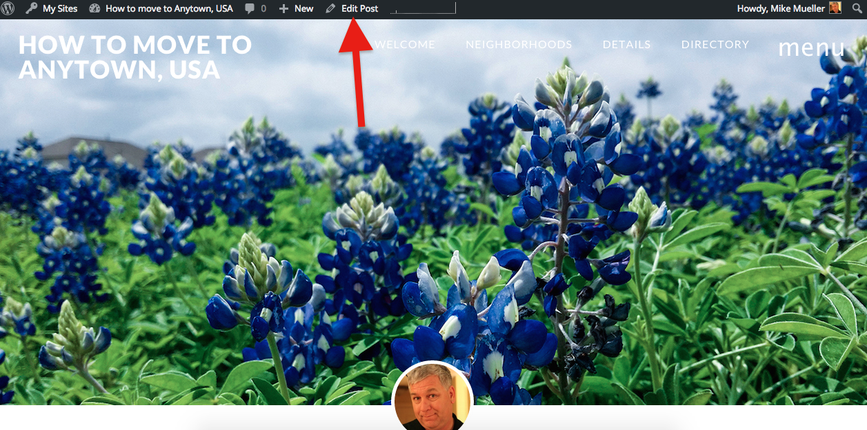 Finding the edit button for a post or page