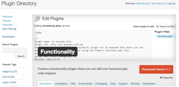 A Functions.php addon plugin