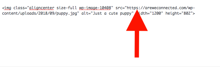 The html that pulls in an image